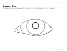 Imagery Eye Observation Organizer