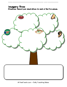 Imagery Tree Observation Organizer