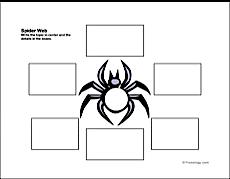Spider Web Organizer Freeology